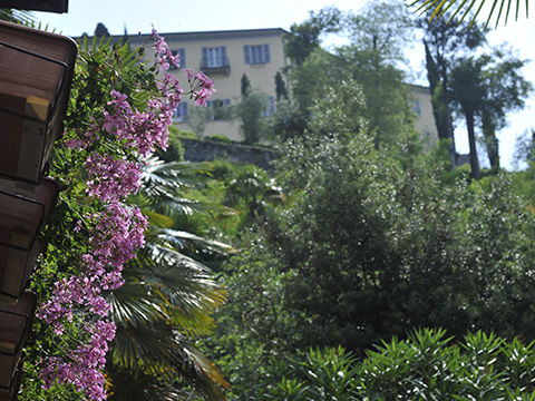 Bilder Ferienwohnung Heart_of_Bellagio_-_2_Bellagio_60_Landschaft in