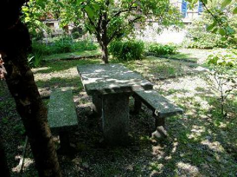 Bilder Ferienhaus Lago Maggiore Max_2201_Pino_20_Garten in Piemont