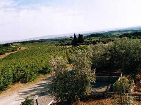 Villa_di_Sotto_7_Castelnuovo_Berardenga_25_Panorama