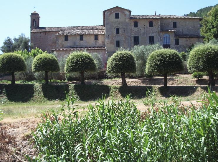 Bild von Sovicille in Italien