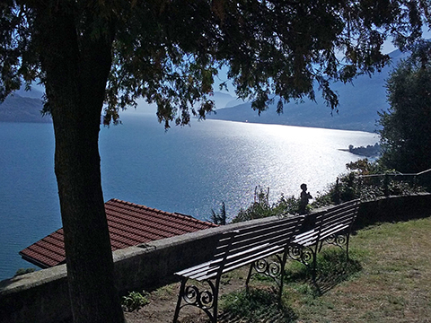 Bilder von Lake Como Apartment Alex_Primo_Domaso_21_Garten