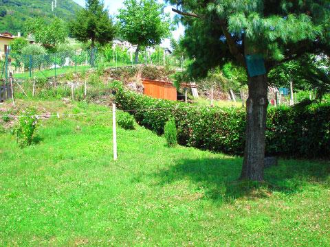 Alma_Vercana_20_Garten