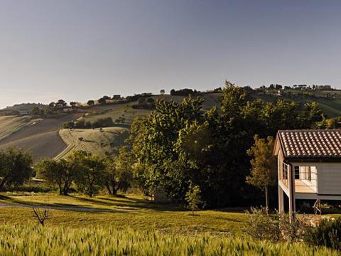 Bilder von Mare Adriatico Villa Antonella_Morrovalle_20_Garten