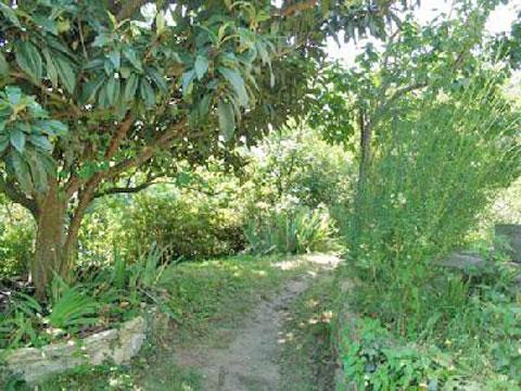 Arizzano_Secondo_5318_Arizzano_20_Garten