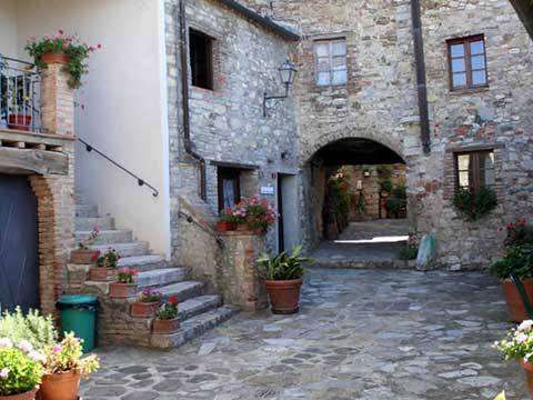 Bilder von Chianti Ferienwohnung Borgo_1_Castelnuovo_Berardenga_20_Garten