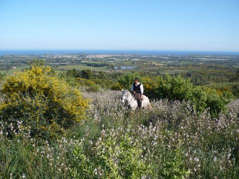 Bilder von Sardinien Südküste Ferienwohnung Corte_Vittoria_Mirto_Pula_60_Landschaft