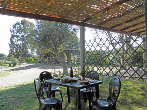 Bilder von Sardinien Südküste Ferienwohnung Corte_Vittoria_Ulivo_Pula_20_Garten
