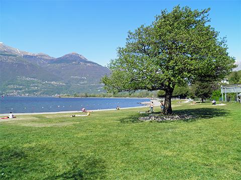 Bilder von Comer See Ferienwohnung Giardino_Primo_Colico_60_Landschaft