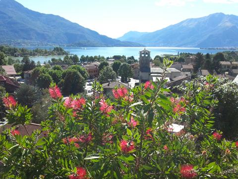Bilder von Lago di Como Appartamento I_Runchet_Cigno_Sorico_25_Panorama