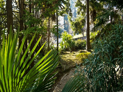 Bilder von Lago Maggiore Ferienwohnung Josefa_Primo_3779_Verbania_60_Landschaft