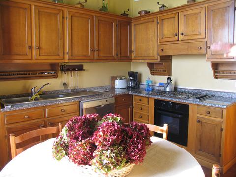 Bilder von Lake Maggiore Appartement Mariucca_Magnolia_756_Lesa_35_Kueche