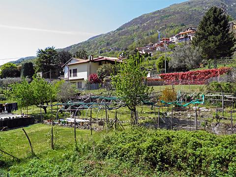 Bilder von Lac de Côme Appartement Nella_Pianello_del_Lario_65_Strand
