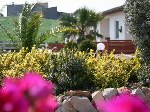 Bilder von Adria Ferienwohnung Oca_Blu_Montenero_di_Bisaccia_21_Garten