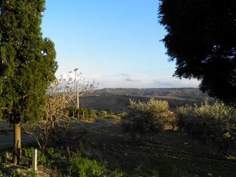 Bilder von Adria Ferienwohnung Oca_Blu_Montenero_di_Bisaccia_60_Landschaft