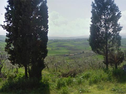 Bilder von Adria Ferienwohnung Oca_Verde_Montenero_di_Bisaccia_60_Landschaft