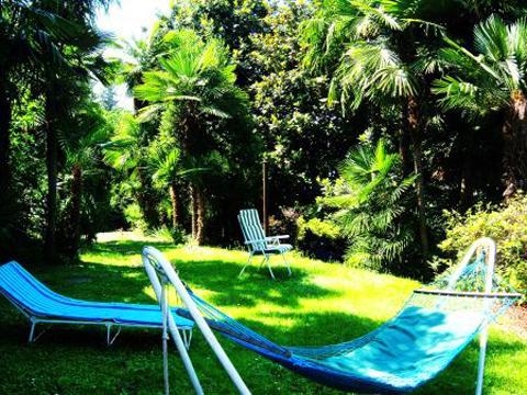 Bilder von Lago Maggiore Ferienwohnung Portici_576_Stresa_21_Garten